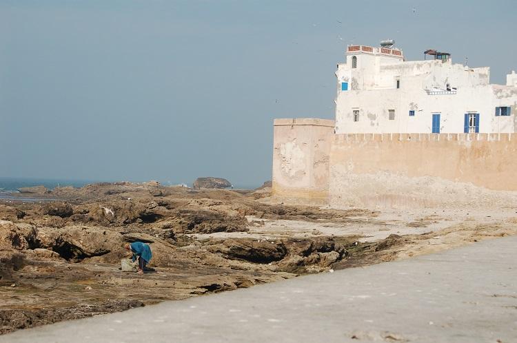 kahina Essaouira fortress walls